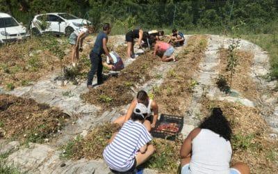 Le jardin solidaire Lou Pantaï mis en lumière dans le n° estival de Lien Social, magazine indépendant d'actualité sociale